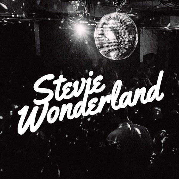 Stevie Wonderland